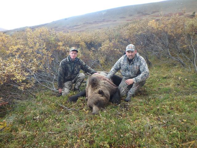 Alaska Bear- Hunting in Alaska