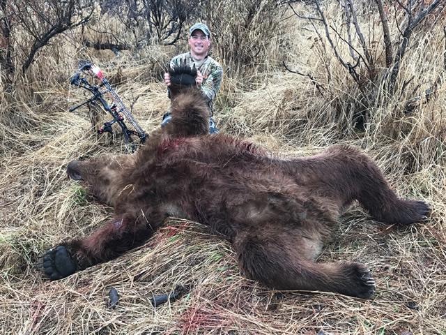 Bear Hunt Alaska
